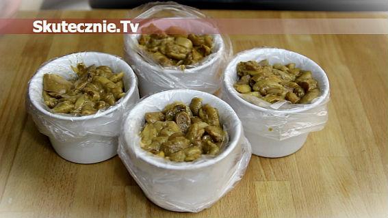 Jak smacznie mrozić maślaki
